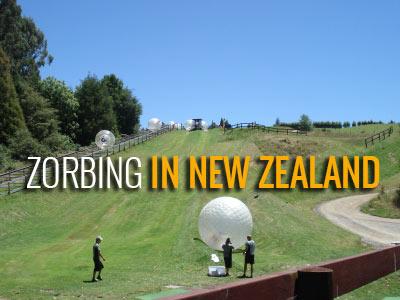 Zorbing In Rotorua New Zeeland